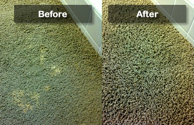 Professional Carpet Dyeing Services In New York Faded